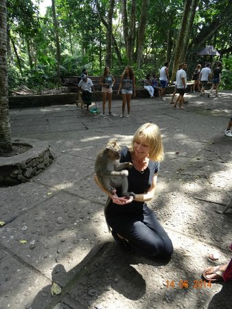 Bali Traditional Tours - Day Tours: Monkey forest