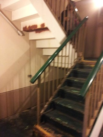 Best Western Williamsport Inn : Guest staircase to 2nd floor