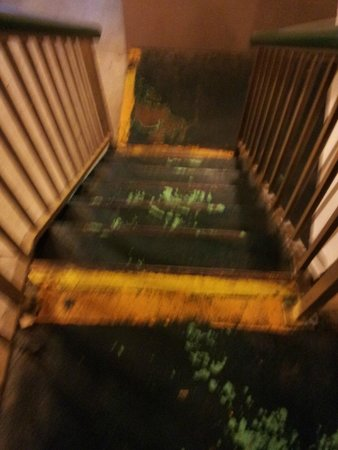 Best Western Williamsport Inn: Guest staircase to 2nd floor
