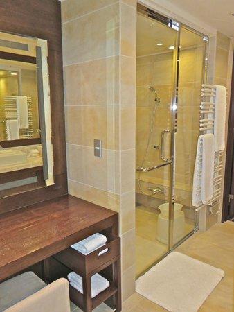 Hyatt Regency Hakone Resort and Spa: shower