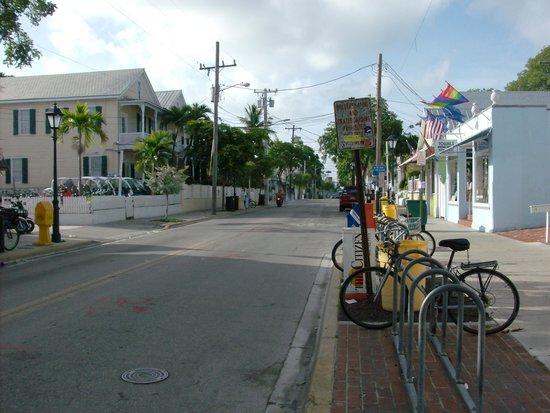 Duval Street: Duval 830am, LOL