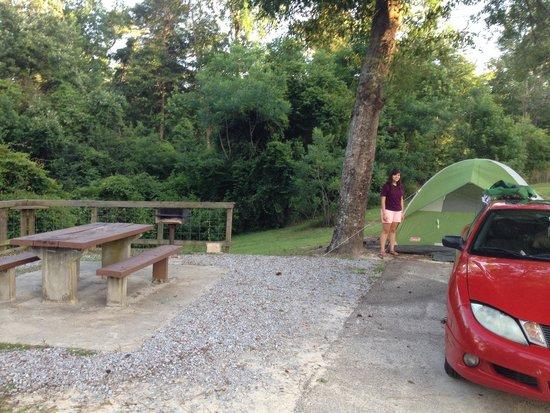 Paul B. Johnson State Park : Great campsite!