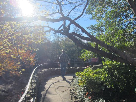 Rock City Gardens: wonderful view