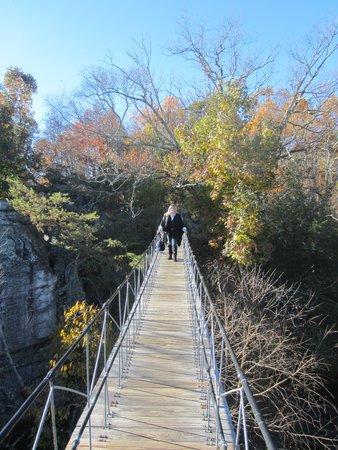 Rock City Gardens: The swinging bridge