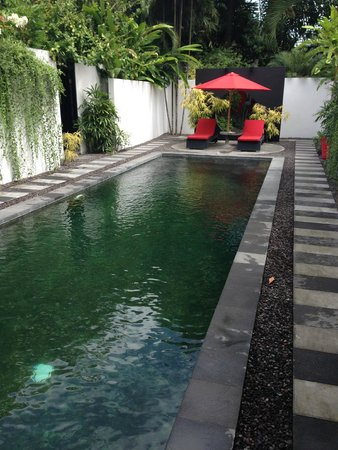 Arvina Villas: Pool