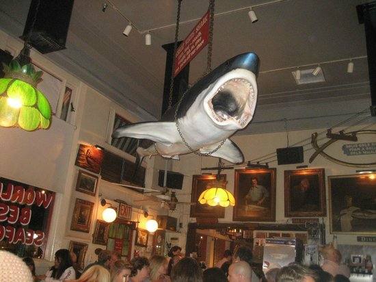 The Great White Shark hanging in the Crab Cooker!