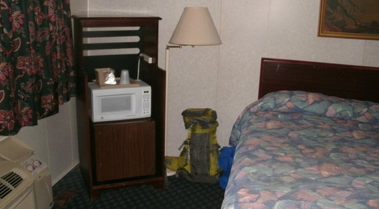 Buena Vista Motel: AC, microwave, fridge, and bed