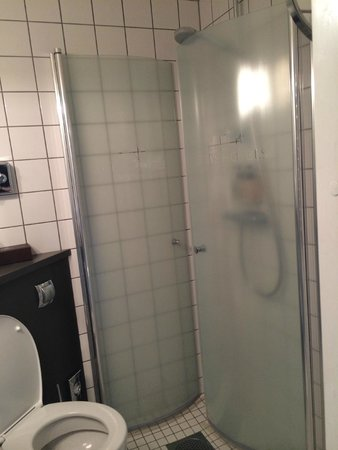 Freys Hotel: Shower door
