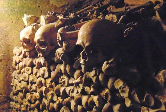 The Catacombs: Yurick?