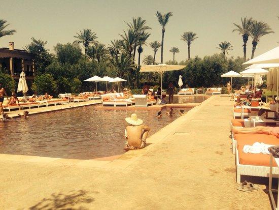 Murano Resort Marrakech : Pool !!!