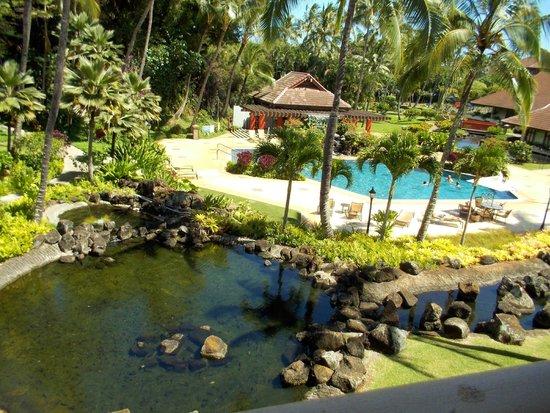 Sheraton Kauai Resort: Garden view from the room