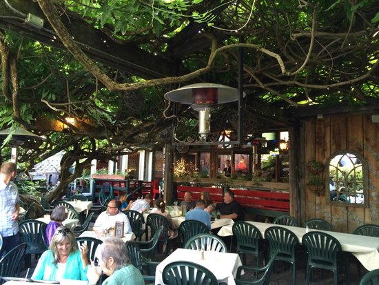 Bella Union Restaurant & Saloon : Wisteria Shade