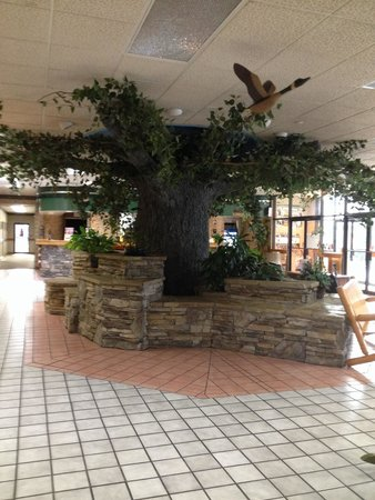 Spirit of the Smokies Condo Lodge: Main lobby
