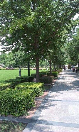 Tsinghua University : Typical outdoor view on Tsinghua U
