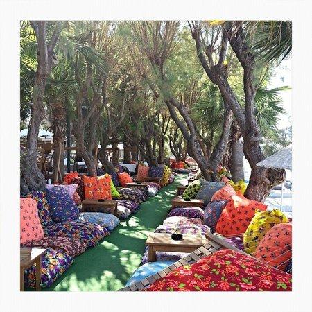 Okaliptus Hotel: Amazing shady cushions to lounge on