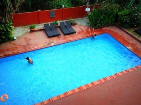 Chalston Beach Resort: Nice Pool