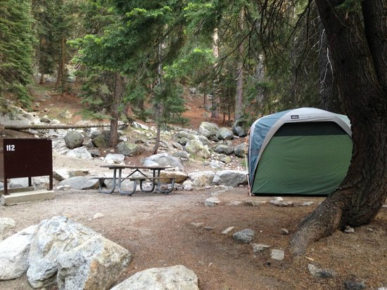 Lodgepole C&ground C& site 112 & Camp site 112 - Picture of Lodgepole Campground Sequoia and Kings ...