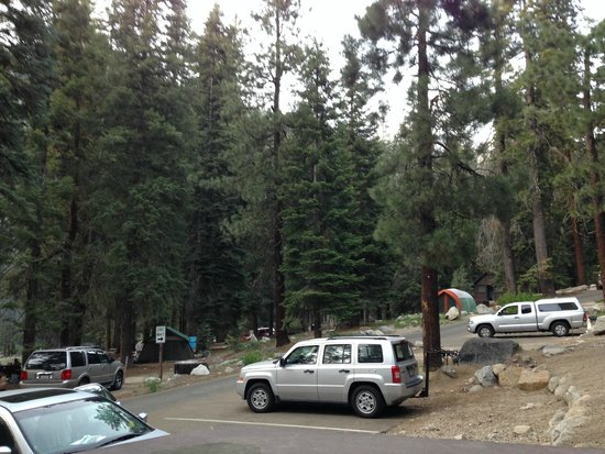 Lodgepole Campground : Surroundings and parking