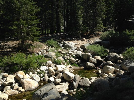 Lodgepole Campground: Marble Fork of the Kaweah River
