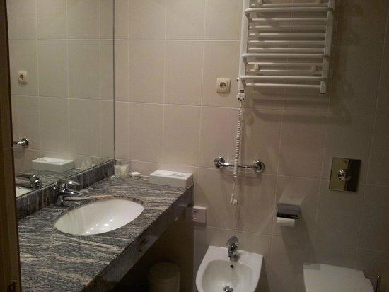 Artis Centrum Hotels : Ванная