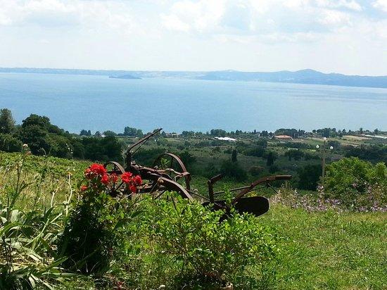 Agriturismo Belvedere: Vista lago