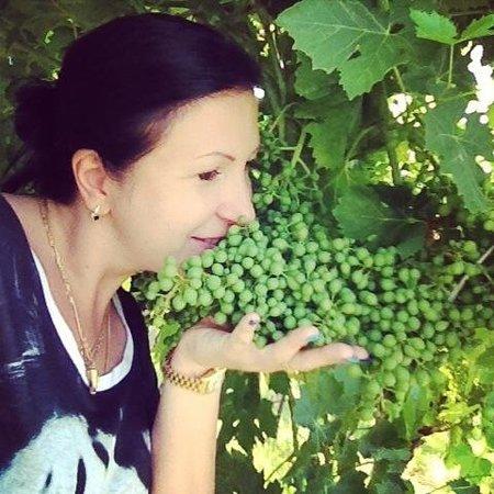 Villa Cordevigo Wine Relais: Виноградники
