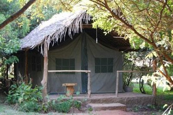 Enchoro Wildlife Camp : Front view of one of the tented rooms