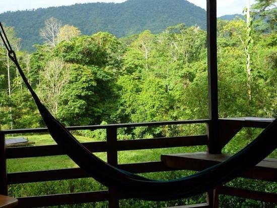 uitzicht van kamer selva bananito lodge