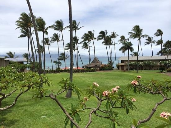 Napili Shores Maui by Outrigger: Ocean View
