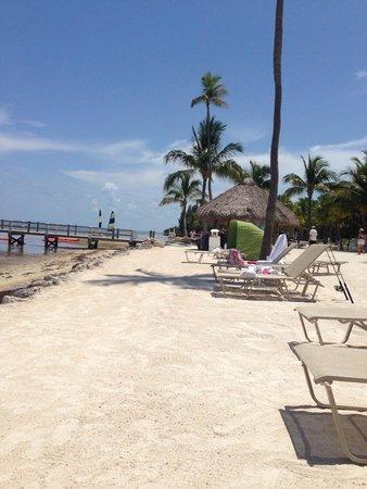 Cheeca Lodge & Spa: strand