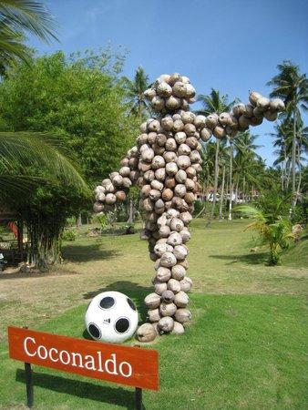Samui Football Golf Club : Coconaldo!