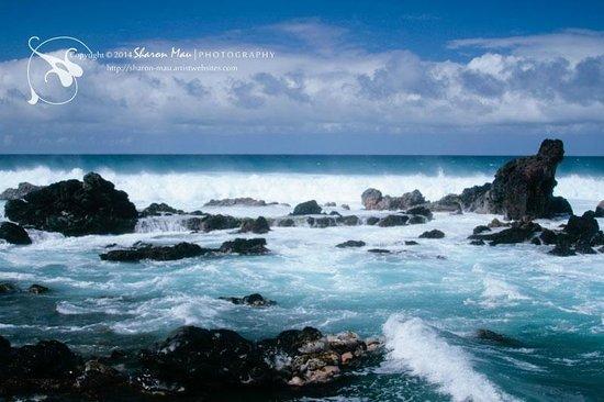 Ho'okipa Beach Park: Hookipa Maui North Shore Hawaii