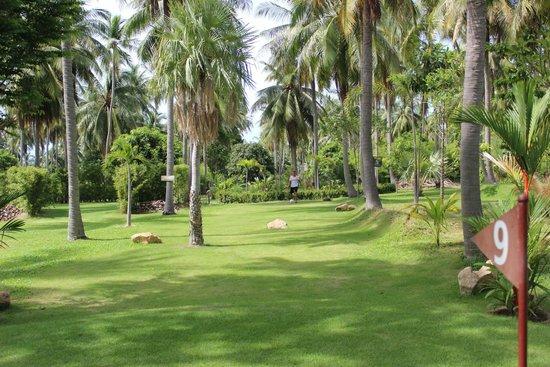 Samui Football Golf Club: Hole 9