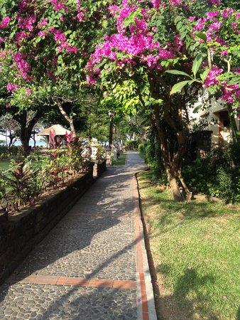 Mercure Resort Sanur : The gardens