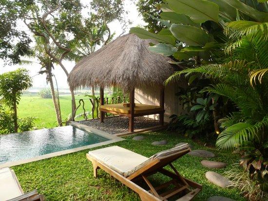 Ubud Padi Villas: vue des relax