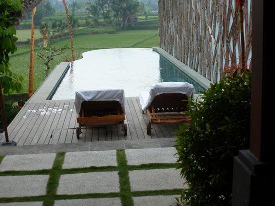 Ubud Padi Villas: entrée de l' hotel