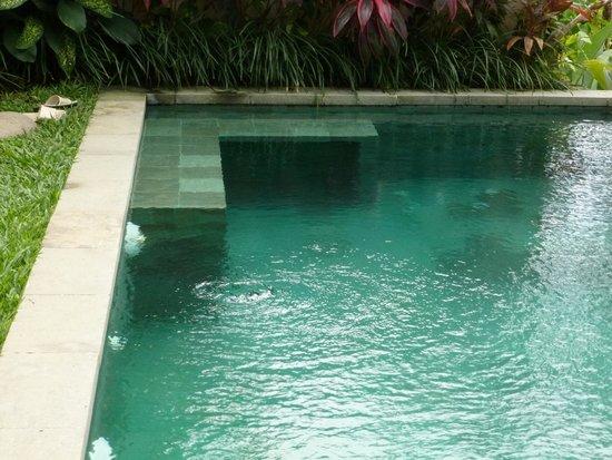 Ubud Padi Villas: piscine privé