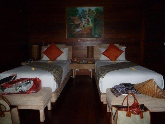 Ubud Padi Villas: chambre