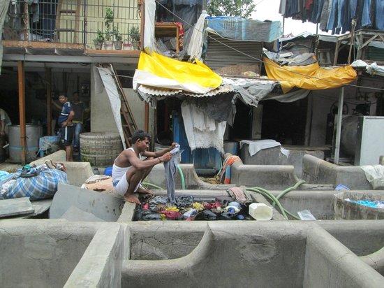 "Dhobi Ghat : Washing clothes in ""Washing Cubicles""."