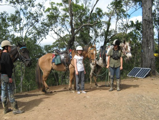 Billabong Horseback Adventures: Time to stretch our legs