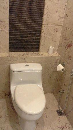Radisson Blu Plaza Delhi Airport: Toilet