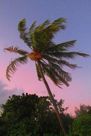 Reethi Beach Resort: sunset