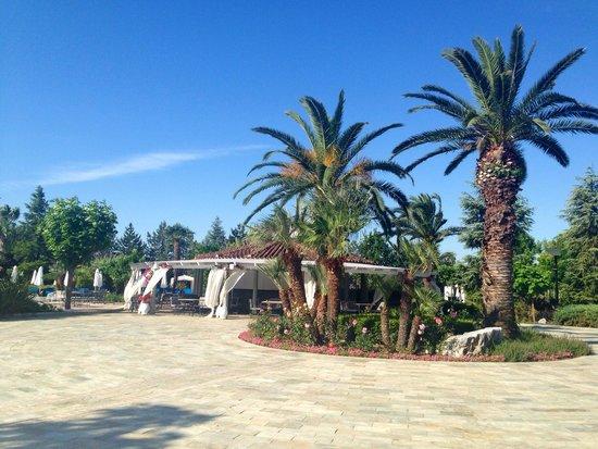 Hyatt Regency Thessaloniki : Hotel gardens
