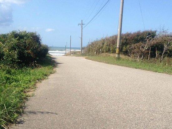 Hakui Kenmin Cyclying Road : 羽咋健民自転車道(途中の車道から砂浜を望む)3