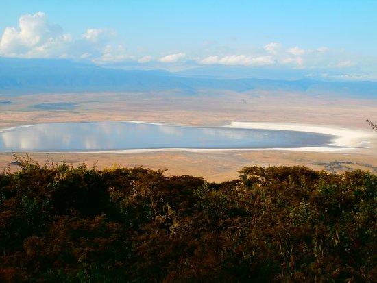 Pakulala Safari Camp: exceptional view!