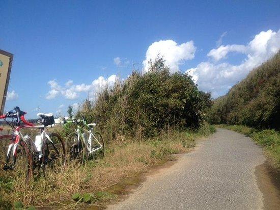 Hakui Kenmin Cyclying Road : 羽咋健民自転車道 5