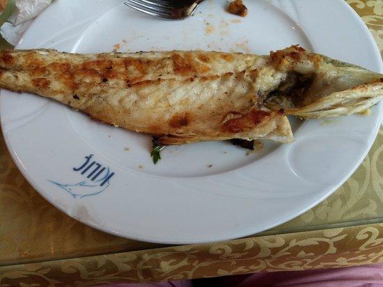 Oztoklu Restaurant : Seabass