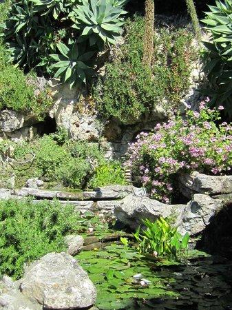 Giardini Botanici Hanbury: vista 2