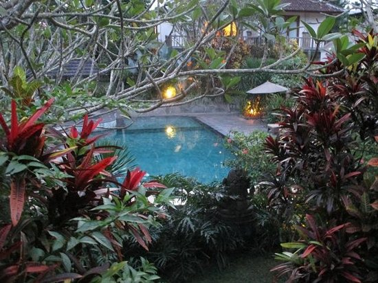 Sri Ratih Cottages : The pool at dusk