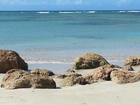 Hotel Oasis : playa bonita